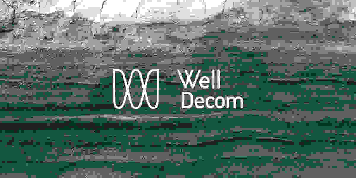 Well Decom Cover