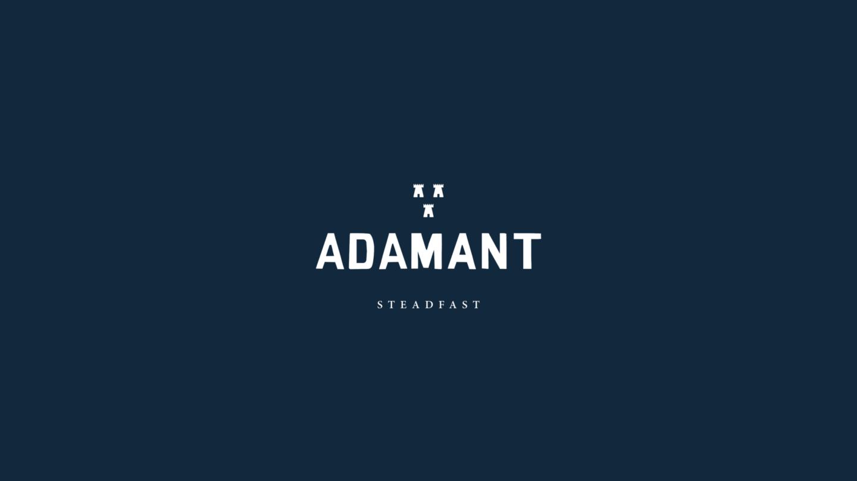 Adamant Fortytwo Studio Logo1600
