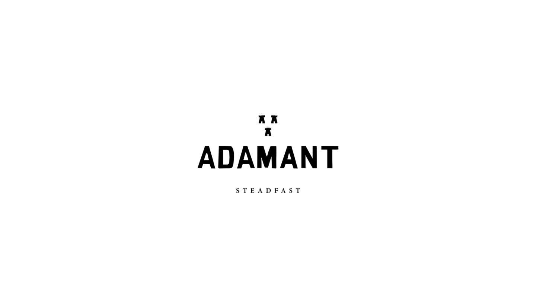 Adamant Fortytwo Studio Lwhite Logo1200