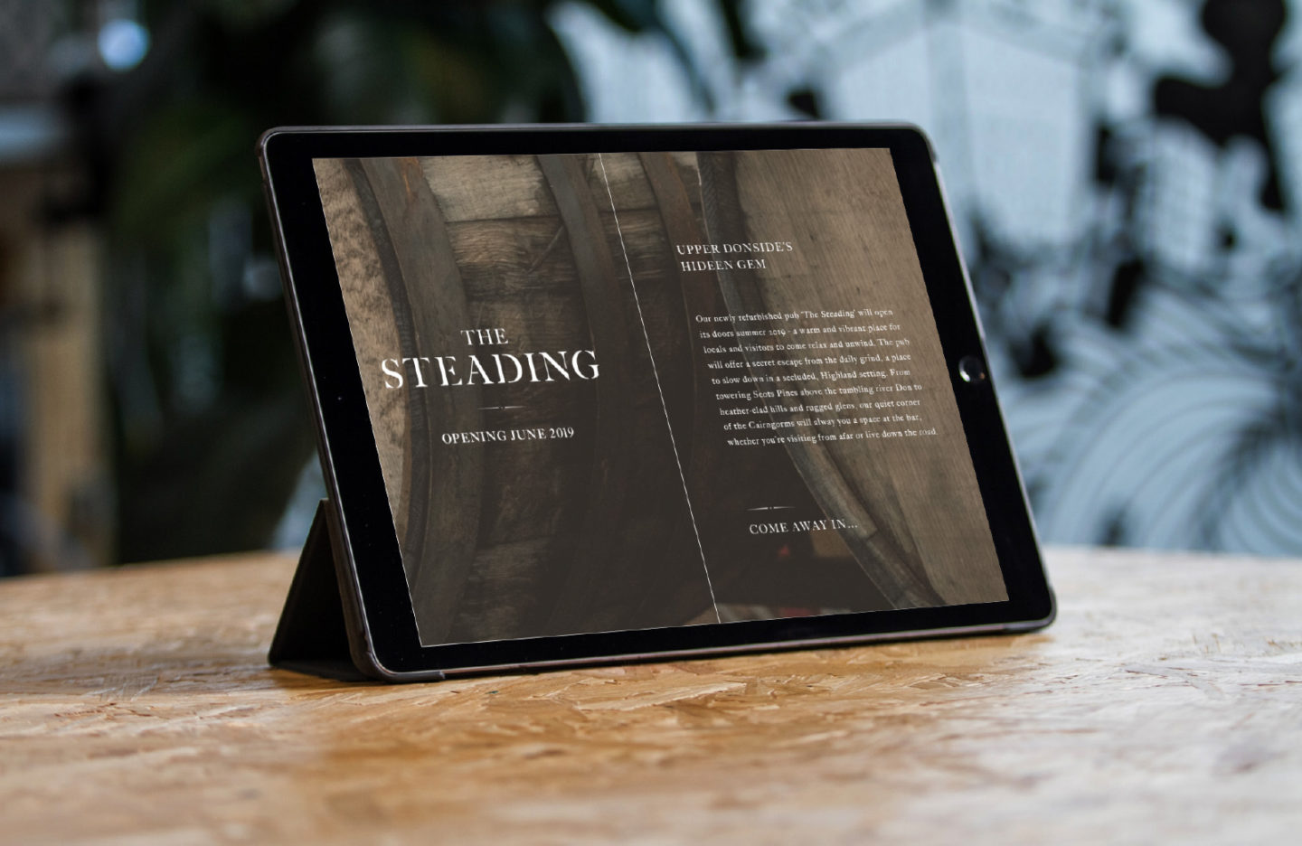 Forty Two Studio Lonach Steading Holding Page