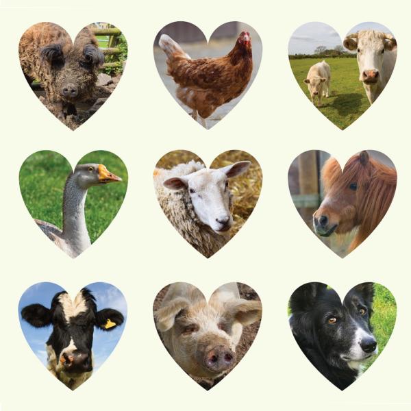 Gh Heart Animals