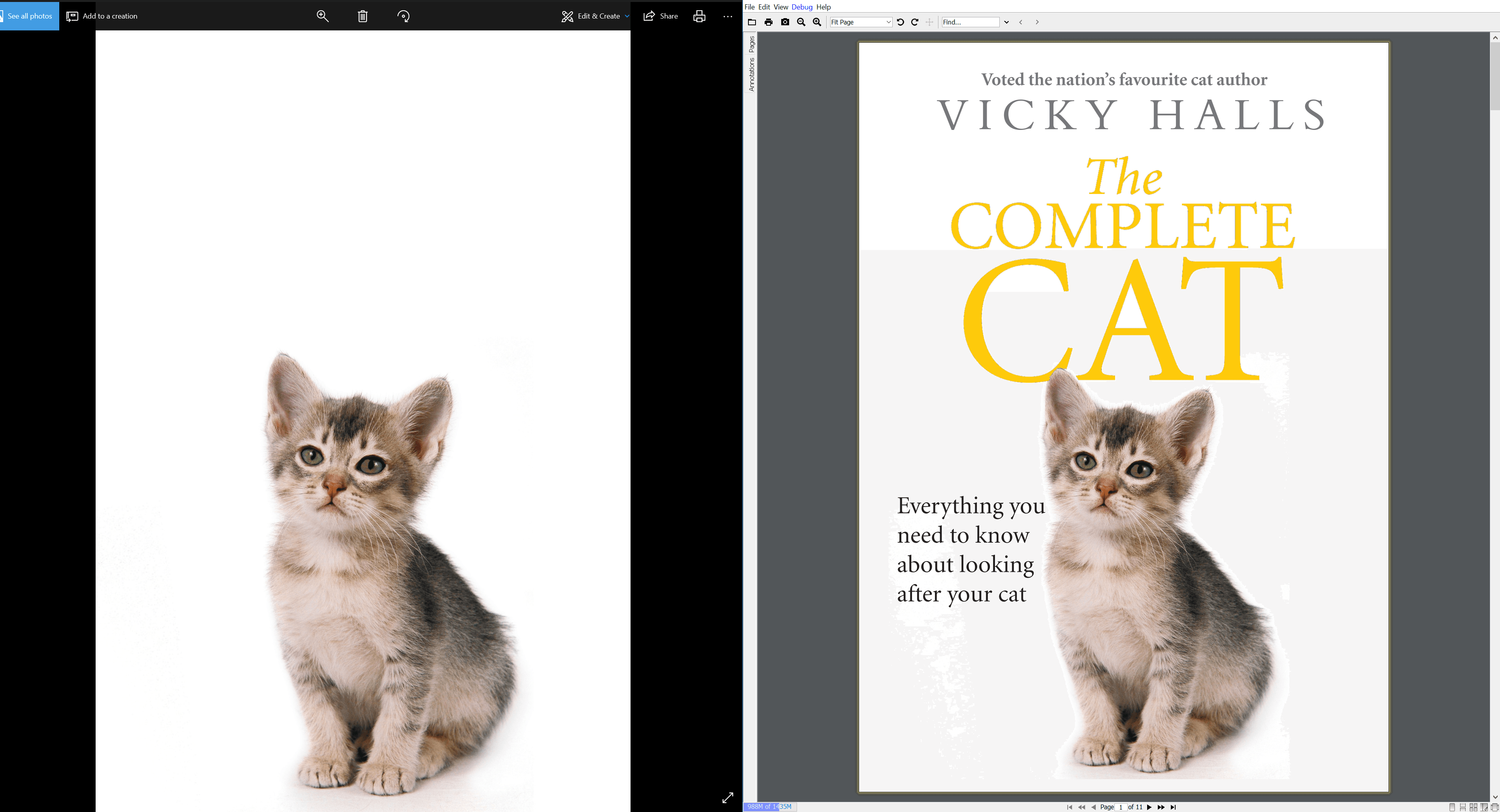 Image extraction from PDF with JPedal