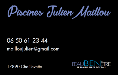 Carte de viste julien maillou lbe royan