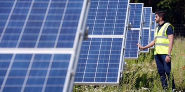 solar-farm-near-swaffham-throws-open-its-doors-to-visitors-news