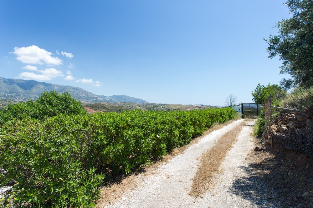 Plot/Land for sale in Campo Mijas