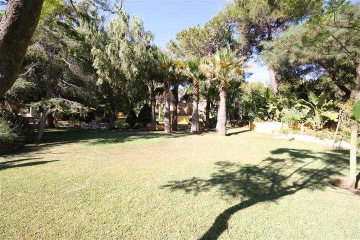 0-bed- plot for Sale in Las Chapas