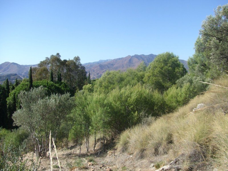 Plot/Land for sale in Mijas