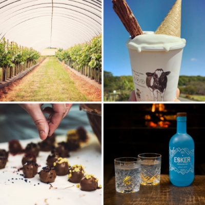 Regional producers and foodies embrace first Provenance Festival