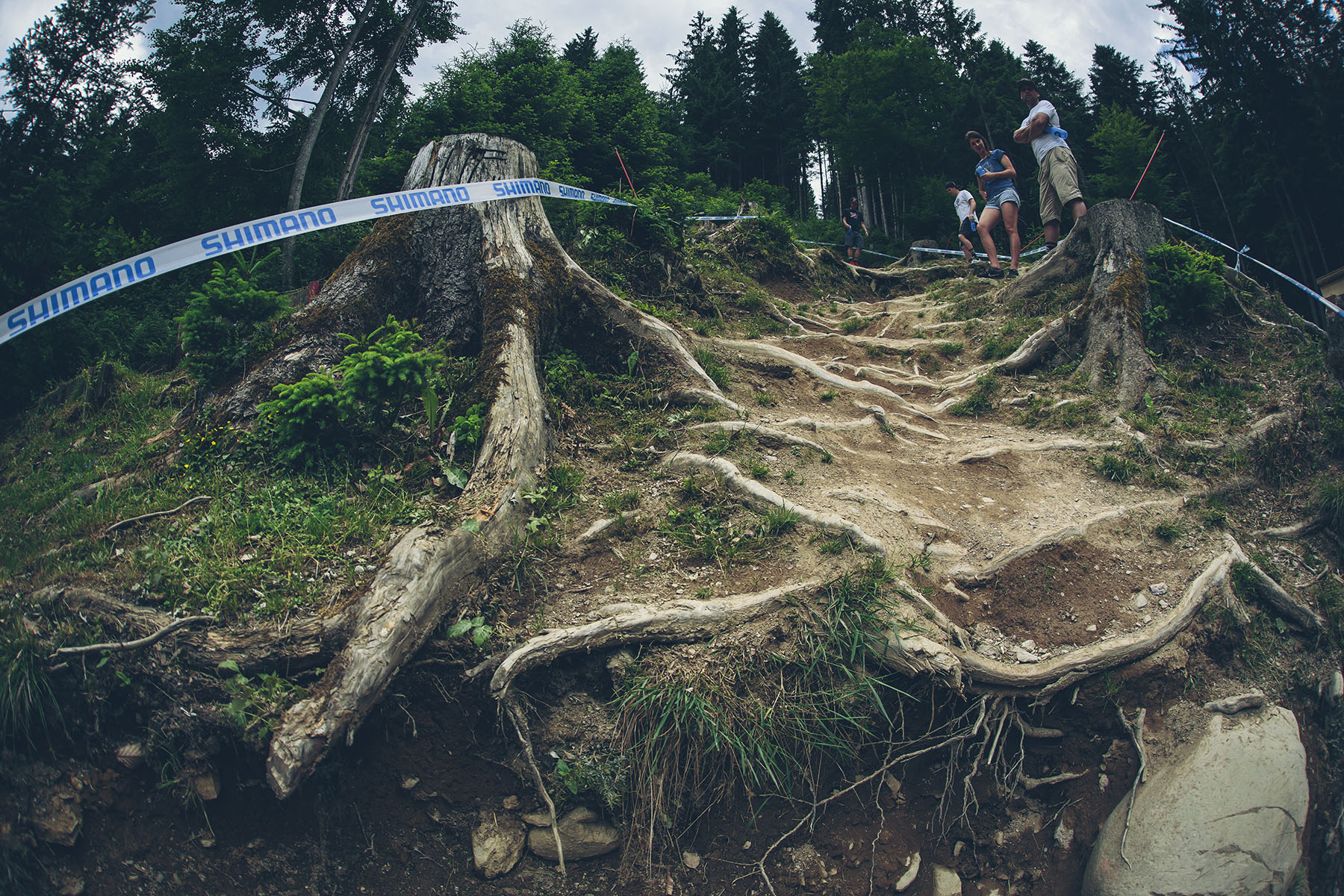 A real mix of features and overall feel to the track. The flat out top section mixed in with nibbly rock gardens leading into rattly roots makes it tickle all the skills. Good all rounder will do well at this track.