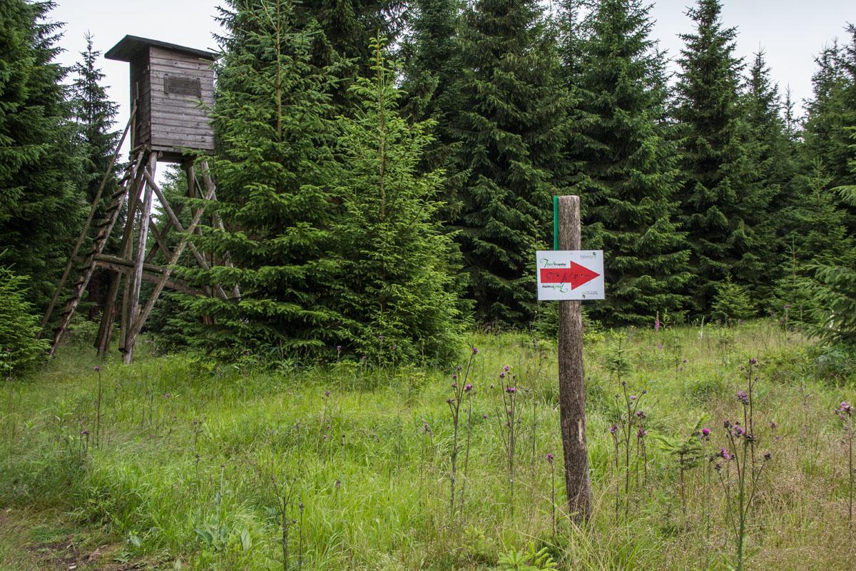Trailcenter Rabenberg