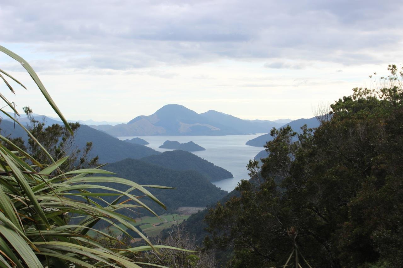 Santa Cruz NZ Enduro