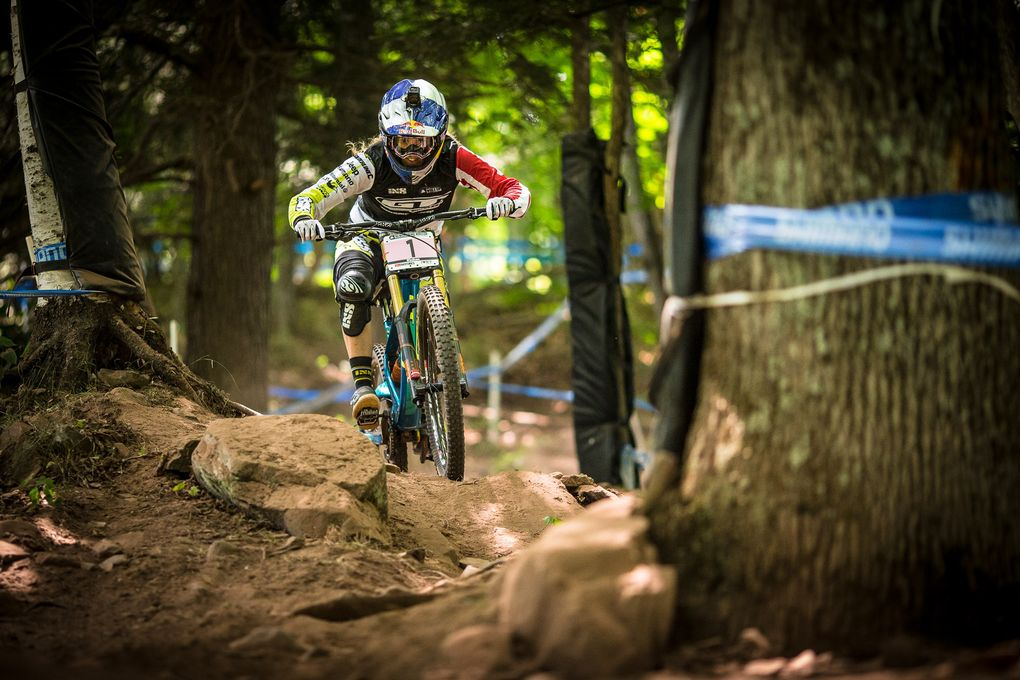 World Cup Windham
