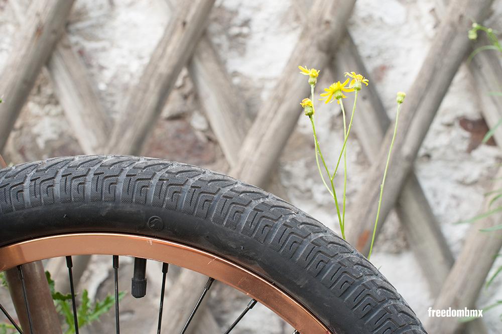 Paul-Ryan-Bikecheck-4