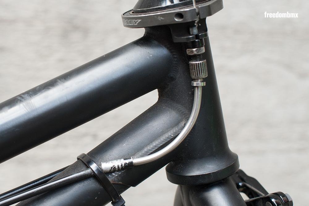 Markus-Reich-Bikecheck08