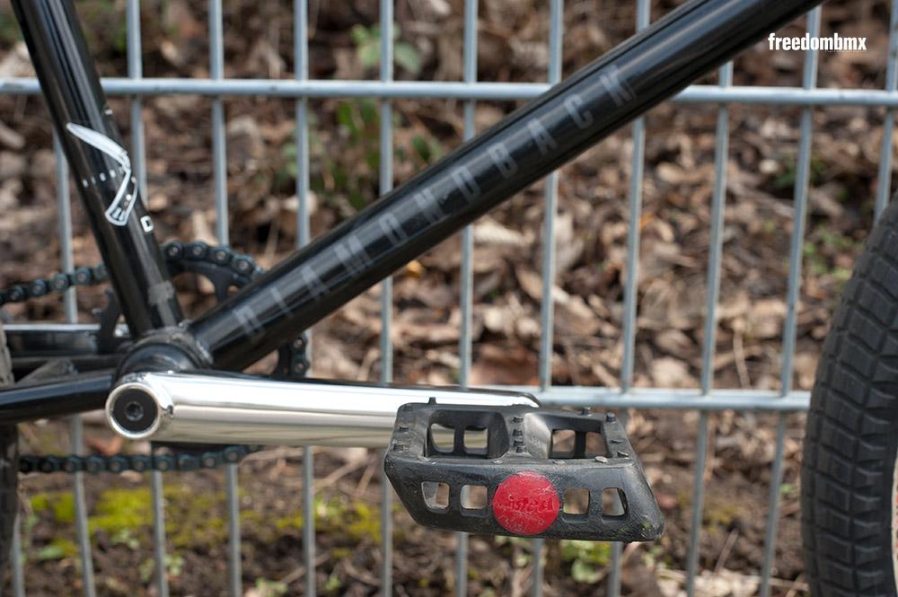 Rob-Ferrett-Bikecheck-11