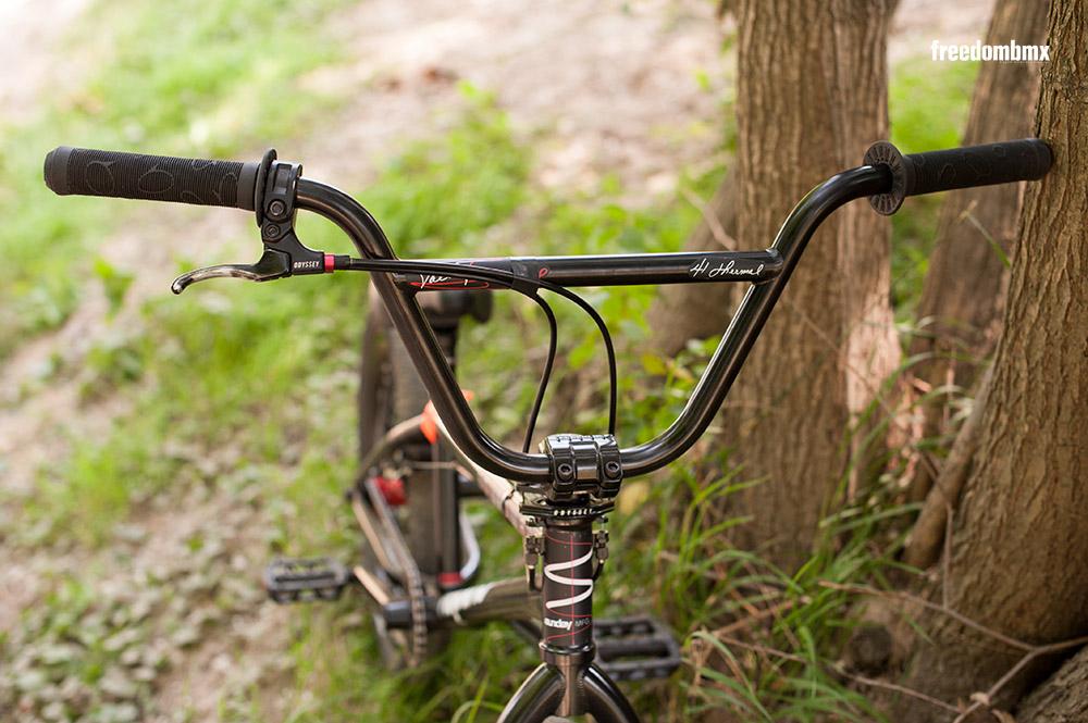 Kevin-Liehn-Bikecheck-03