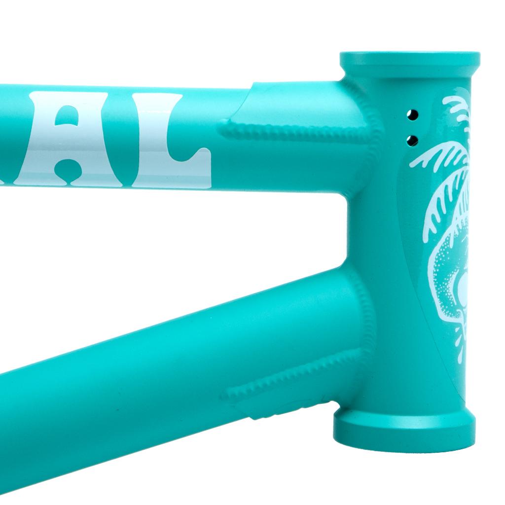 federal-bikes-bmx-rahmen-boyd-hilder-frame-matt-turquoise-5