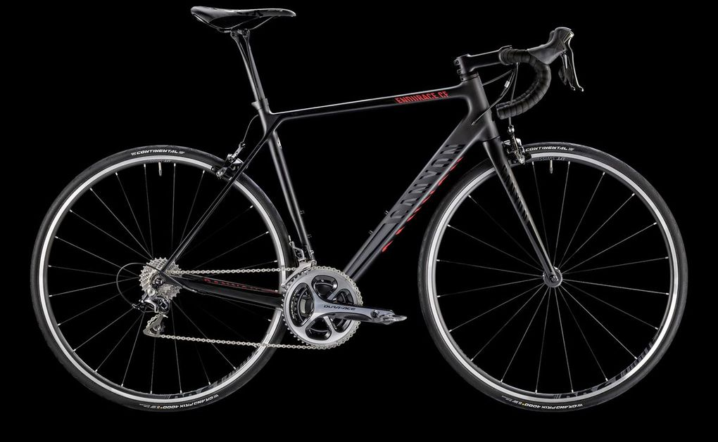Sortiment 2016: Canyon Endurace CF 9.0 SL (Foto: Canyon)