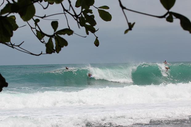Gringos in Bocas
