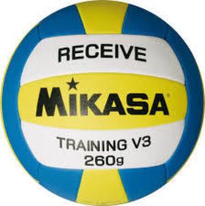 Training V3