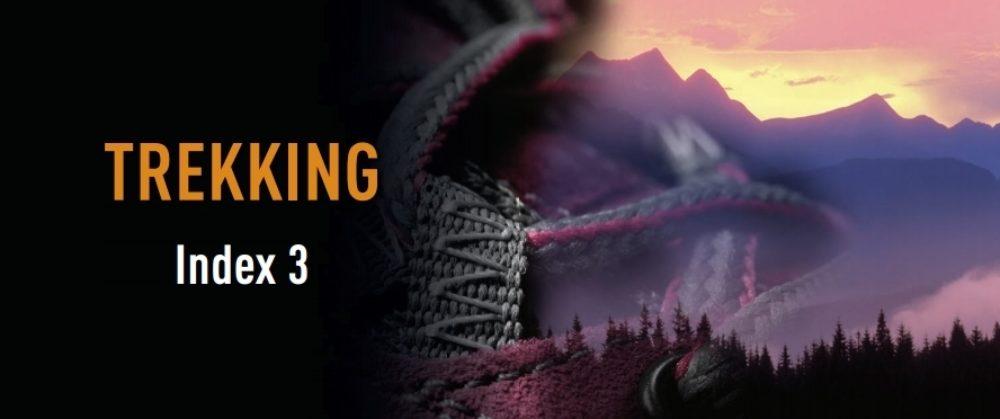 Index Trekking