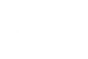 SCDI-Logo-white.png