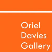 Oriel Davies Gallery