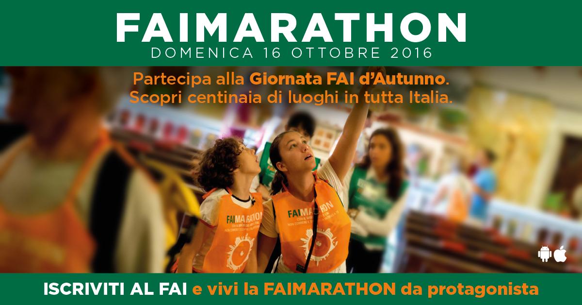 Fai marathon 12 10 16