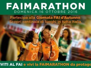 Show fai marathon 12 10 16