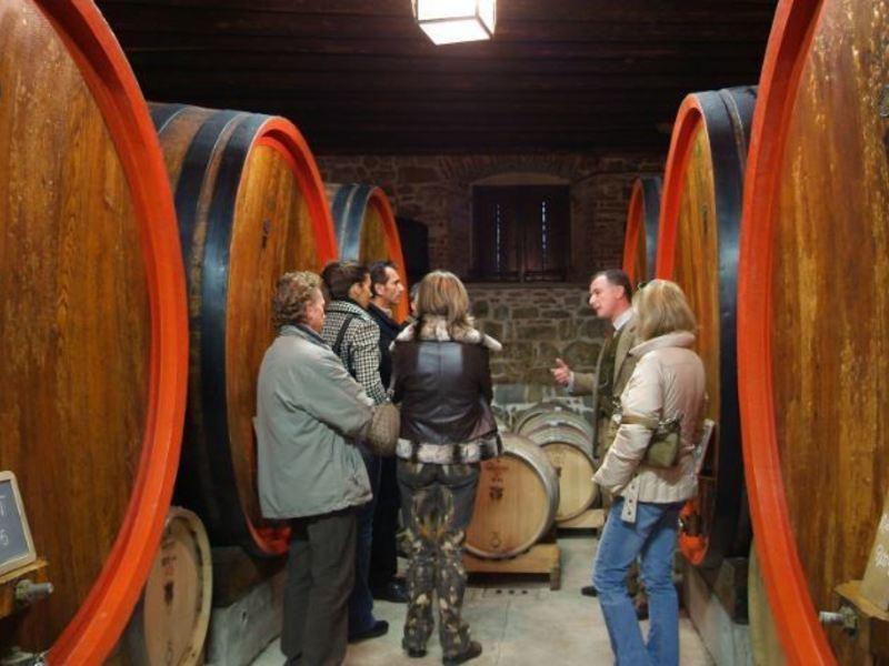 Cantine Aperte a San Martino: la spiegazione di un viticoltore!