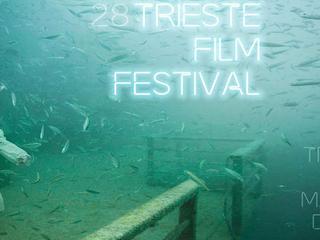 Show trieste film festival 17 01 17