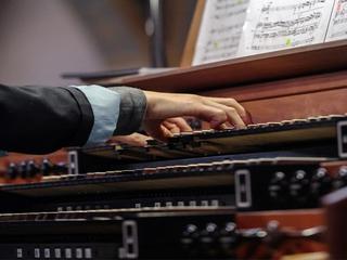 Show organo 07 07 17