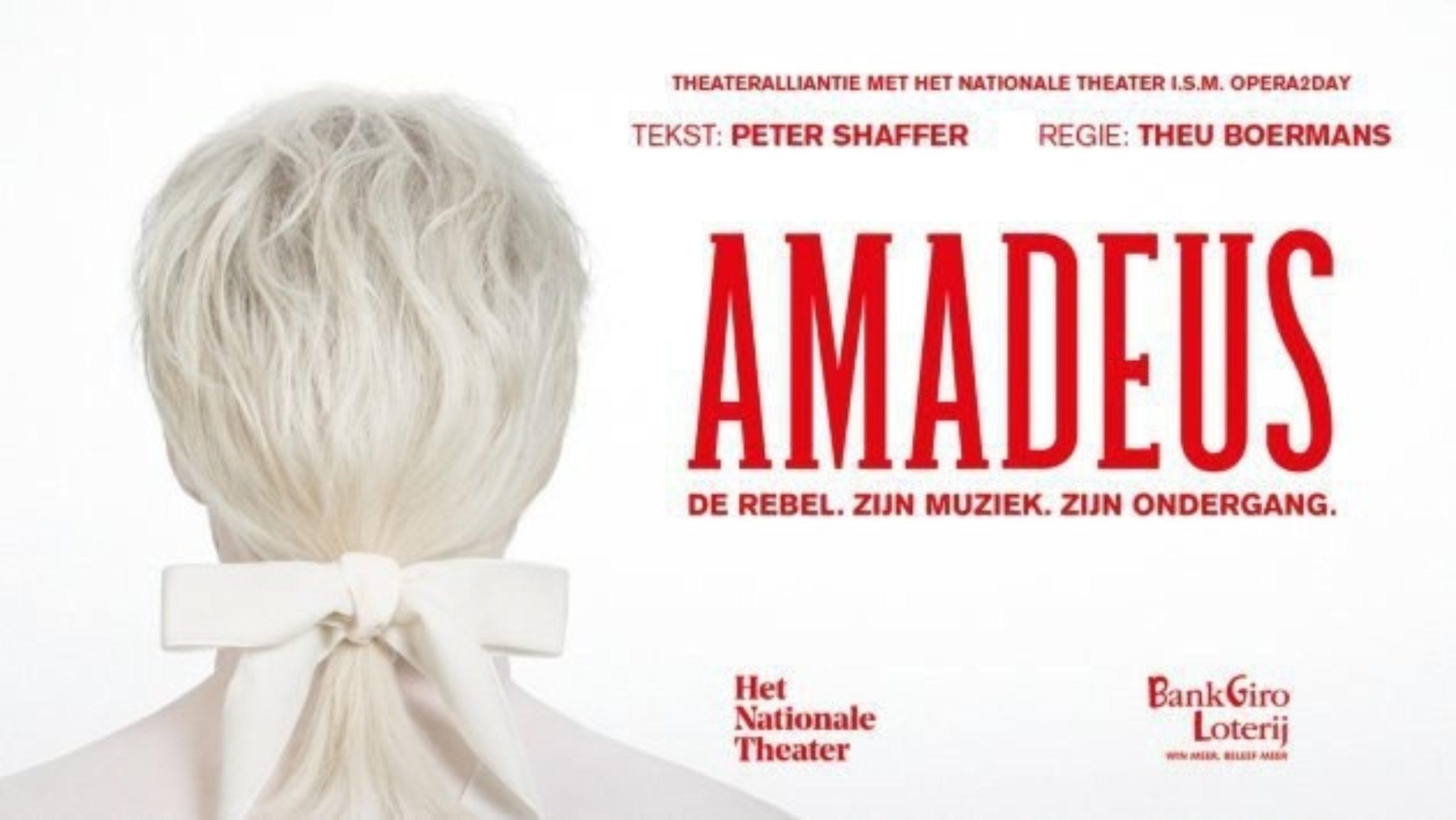 Amadeus1 2298 1551265386 35hxcy5sc3