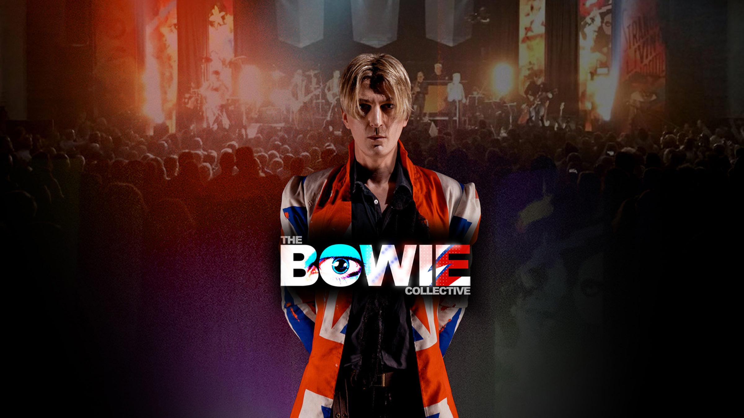 Bowie collective web 35hxtf6g7e