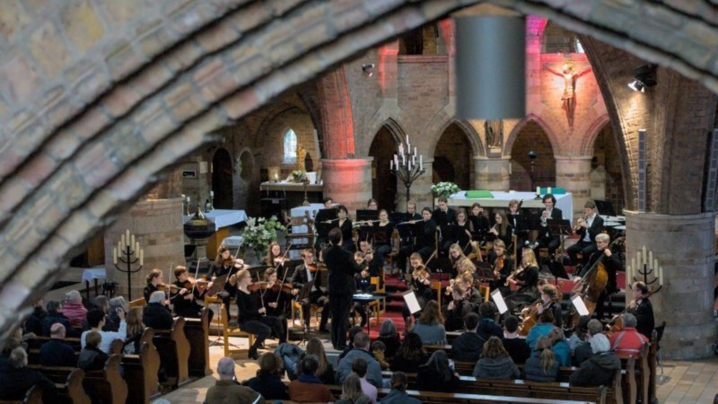 Musica Silvestra Orchestra (MSO)