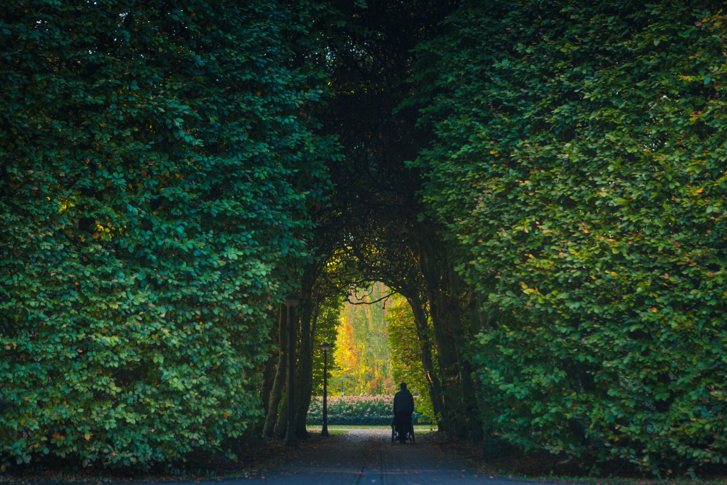 Herfst van Heekpark Enschede