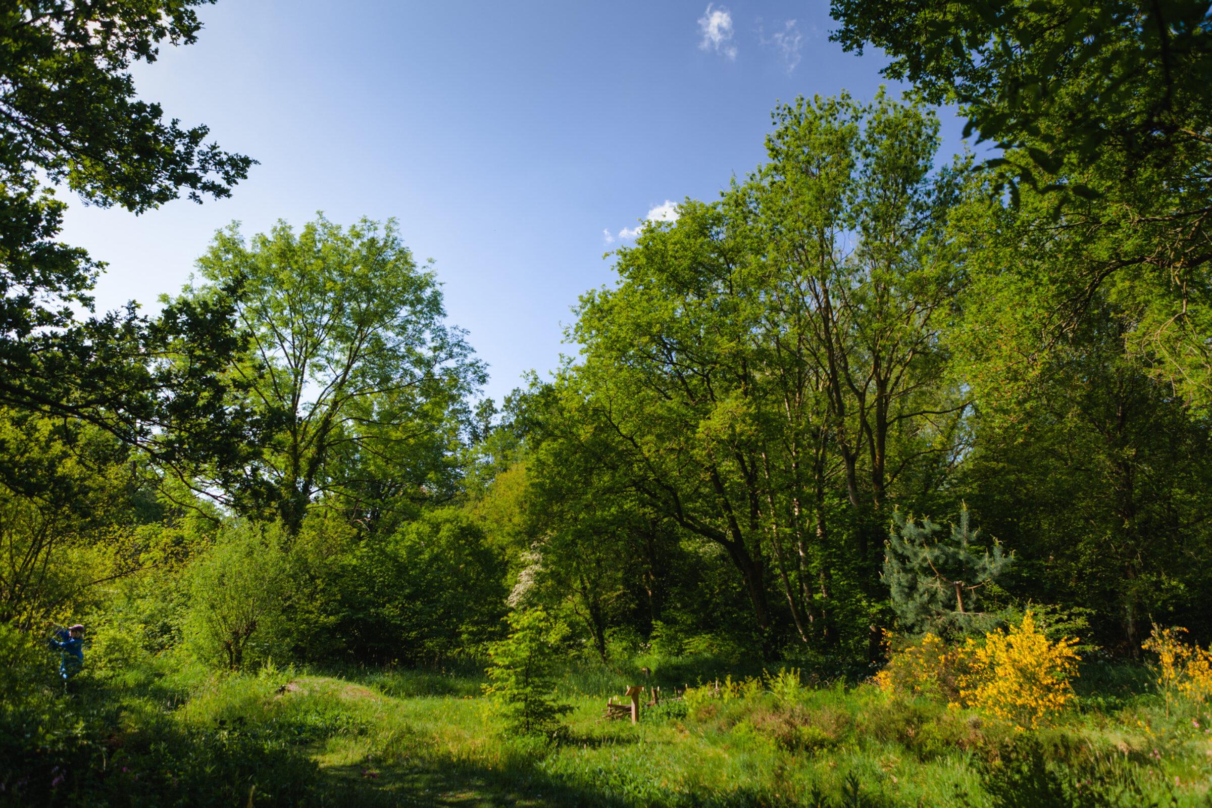 Ledeboerpark Enschede