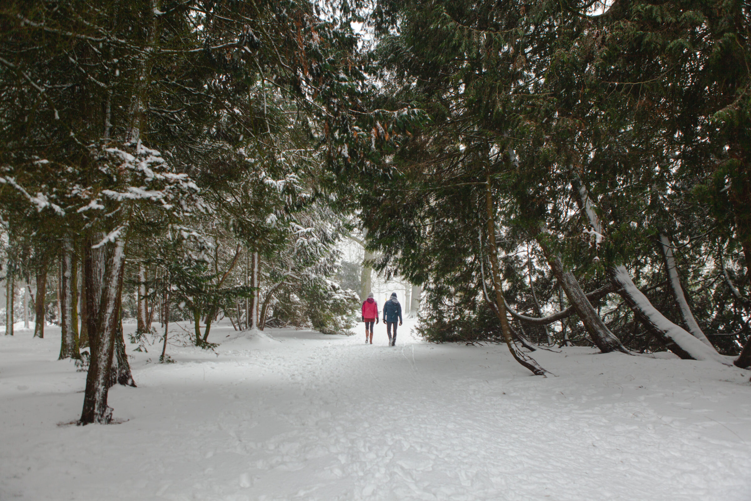 Sneeuw wandelen Enschede