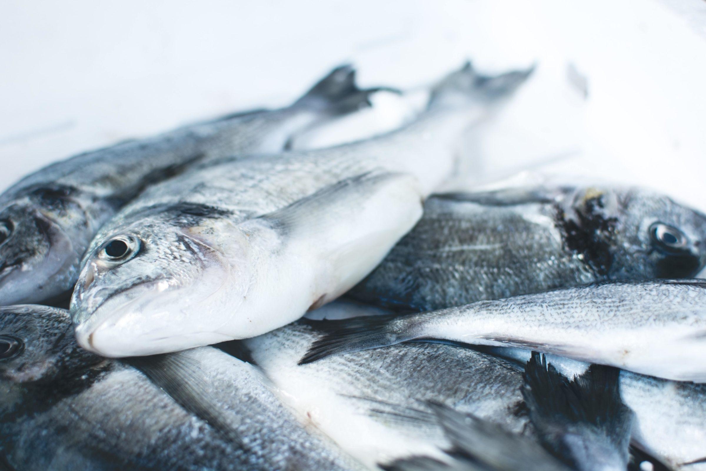 Vlees en vis markt Enschede