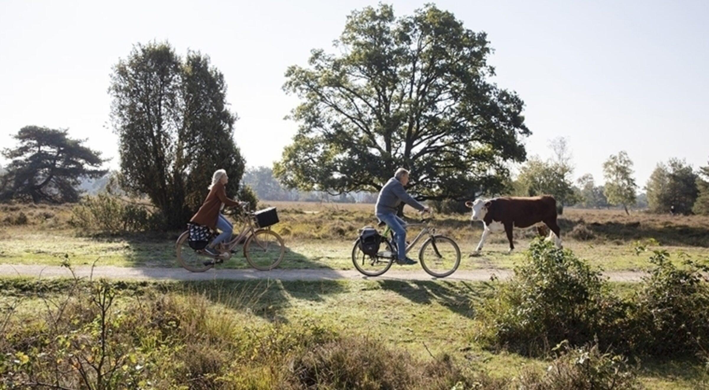 Weekendje weg Natuur en actief Enschede