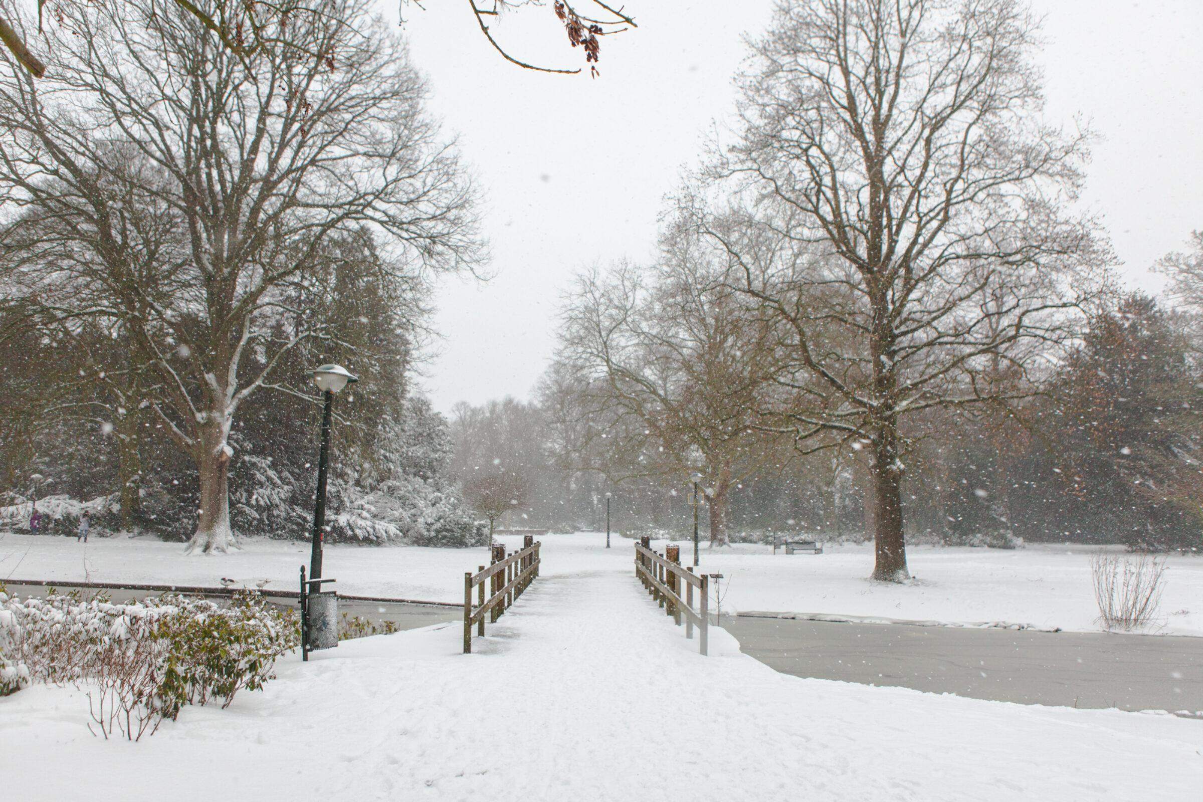Sneeuw Volkspark Enschede