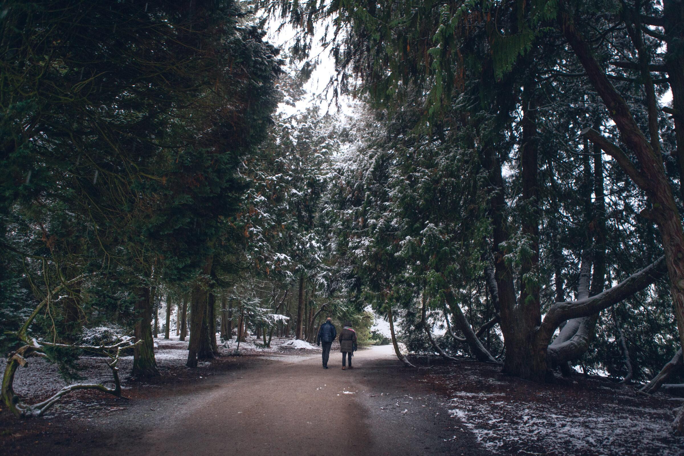 Wandelen sneeuw Enschede