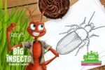 Big Insects Kidsproof Twente