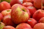 Groenten en fruit markt Enschede