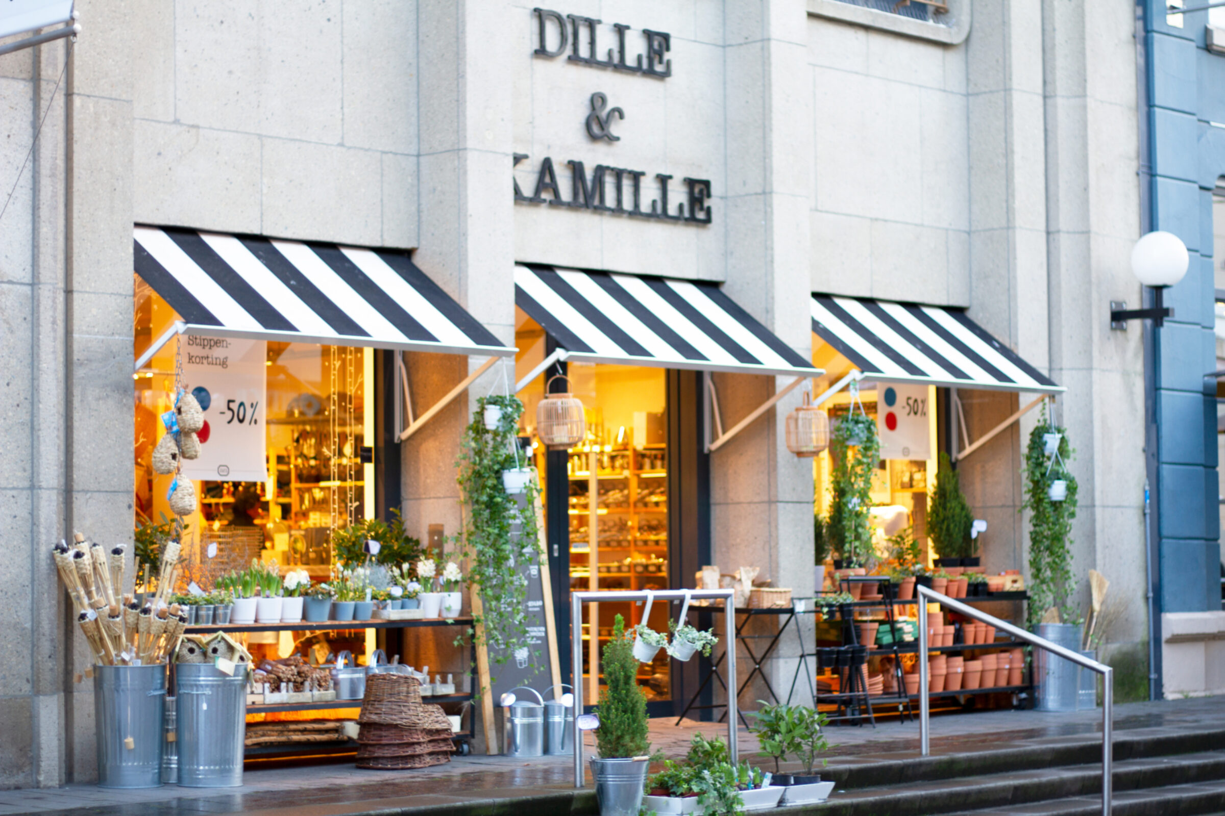 2020 Dille Kamille Enschede