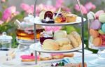 Hightea 102 1523526625