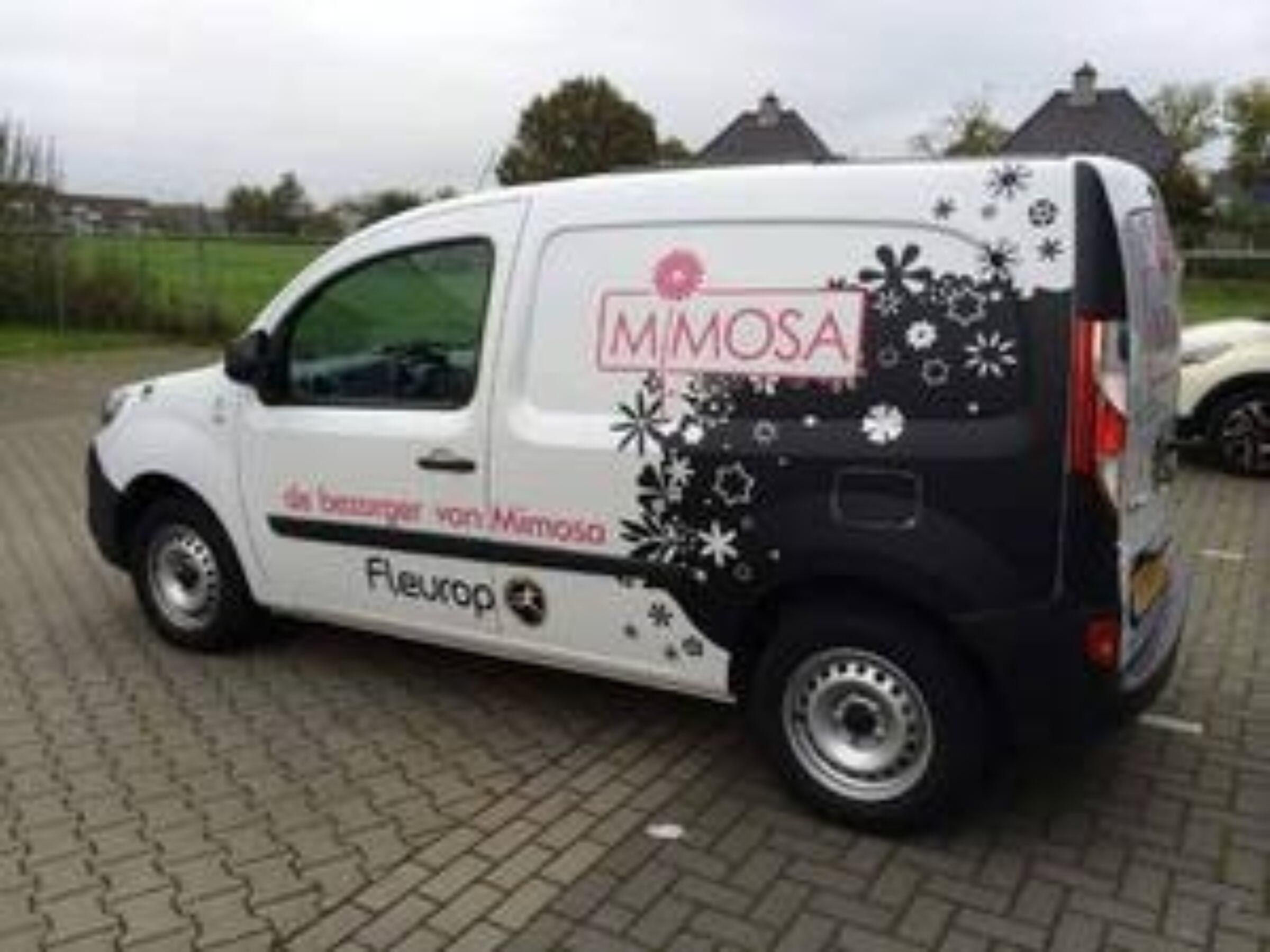 Mimosa Enschede1