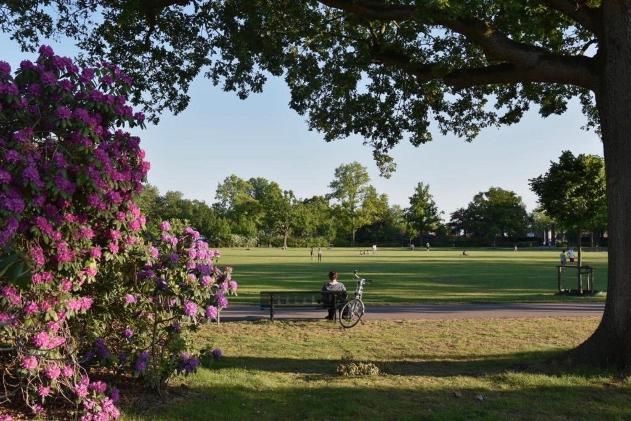 Van Heekpark 1