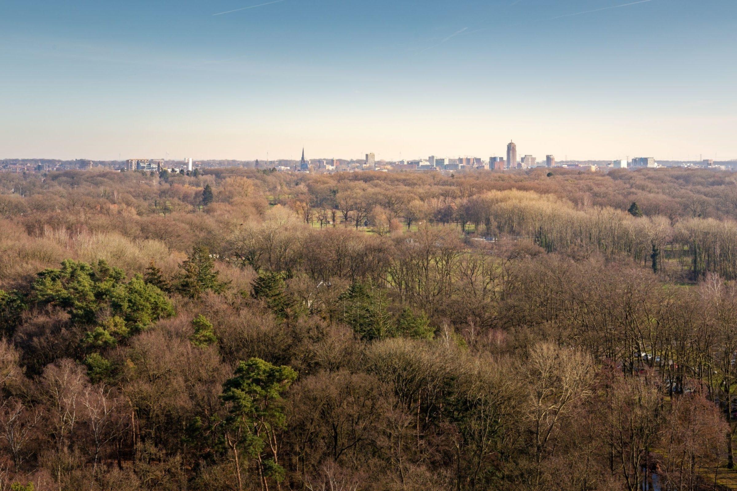 Uitzicht Richting Centrum Enschede Winter Lkf