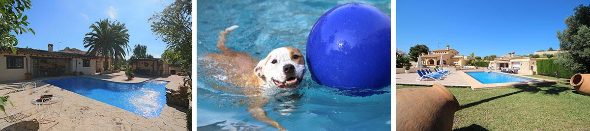 Meer informatie over huisdiervriendelijke verblijven in Calpe